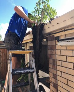 Bond Plumbing offer the best roofing repairs on the Gold Coast
